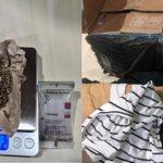 Anjing K-9 Bea Cukai Batam Deteksi Ganja Di Dalam Paket Tujuan Lombok